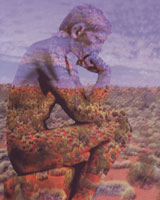 """Art image of the """"thinking man"""" statue superimposed on a landscape image of desert and scrub gasses and a cloudy blue sky"""