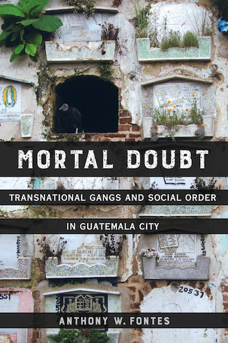 "Cover Image of Book ""Mortal Doubt.."" with images of stone tombs (one which is open with a dark bird standing in the opening)"